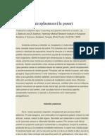 Controlul Micoplasmozei La Pasari
