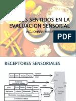 Tema II Los Sentidos en La Evaluacion Sensorial