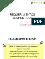 REQUERIMIENTOS ENERGETICOS