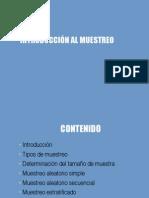 01 Introduccion Al Muestreo
