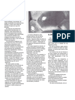 ELABORACION DE BRIOCHES Y DERIVADOS.pdf