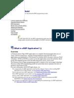 45202342 Programming Model in BSP