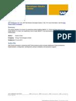 SAP NetWeaver Developer Studio 7.30 Installation Guide