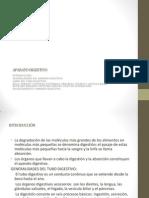 APARATO DIGESTIVOTERCIARIO