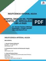 Insuficiencia Arterial Aguda.htm