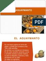 Aguaymanto Mayores