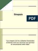 sinapsis-120930143936-phpapp02