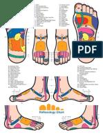 Reflexology Foot Chart -Ok
