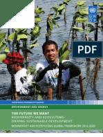 UNDP Biodiversity and Ecosystems Global Framework 2012 2020