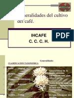 cultivo del café y manejo tejido