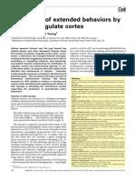 holroyd y yeung 2011.pdf