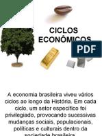 Ciclos economicos brasileiros