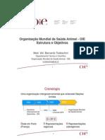 Upload 20121107171319todeschini Oie Presentacion Geral Ufgrs 2012