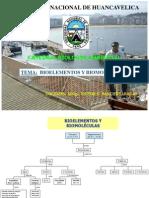 2. Biolementos y biomoleculas.ppt