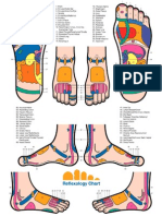 Reflexology All Foot Chart