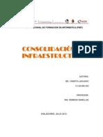 Consolidación de la Plataforma Tecnológica critica