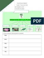 Guía de Ciencias Naturalesintegracion