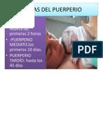 Etapas Del Puerperio
