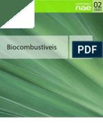 02 biocombustiveis