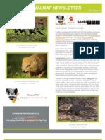 MammalMAP August Newsletter