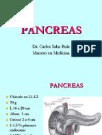 Pancreas Anatomia Salas