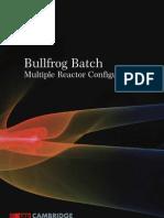 Batch Reactors Multiple