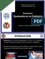 PPT QUEMADURAS 2013