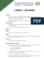 Reglamento Benjamin, 2012 - 2013
