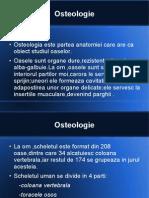 Osteologia Power Point
