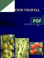 NUTRICION MINERAL2
