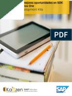 Brochure SDK SAP Business One