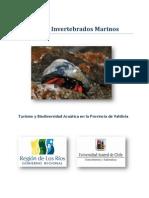Guía Invertebrados Marinos