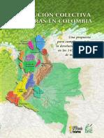 LIBRO RESTITUCIÓN COLECTIVA DE TIERRAS