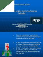 Conferencia Uss Proceso de Amparo Contra Resoluciones Judiciales 31ago2011