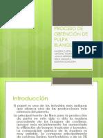 PROCESO INDUSTRIAL DE PRODUCCIÓN DE PAPEL
