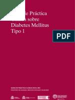 Diabetes Tipo 1 c2b7 Guc3ada Prc3a1ctica Mssi
