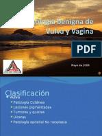 Patologia Benigna de Vulva y Vagina