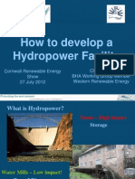 How to Develop a Hydro Power Facility. Chris Elliot, Western Renewable Energy