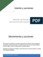ACTIVIDAD Movimiento y Acciones Mejorado97