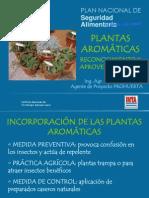 plantas aromáticas - Cordoba