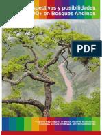 Perpstectivas de La Redd Bosques Altoandinos