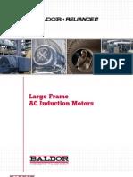 Baldor Motor.pdf