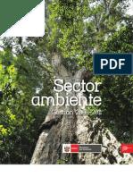 Sector Ambiente 2008