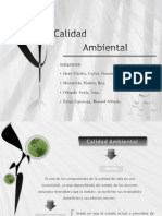 Calidad_ambiental . Diapos
