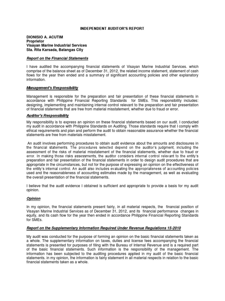 Independent Auditors Report - Sample (1) | Financial