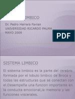 Sistema Límbico2009I