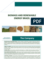News Brochure Business Brazil Biomass Renewable Energy 2009