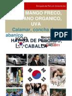 Resources Promo Piura Corea Del Sur Marcela Lopez Bravo