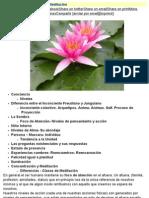 Psicología Transpersonal - Meditación