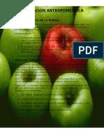 pagina de nutricion[1]